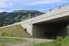 alpineoverpass1