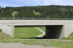 alpineoverpass2