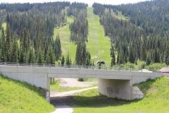 alpineoverpass3